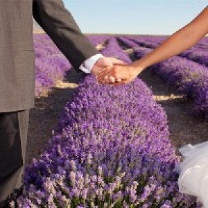 Лавандовая свадьба - 46 лет