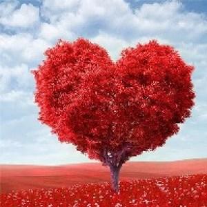 Красного дерева свадьба - 27 лет