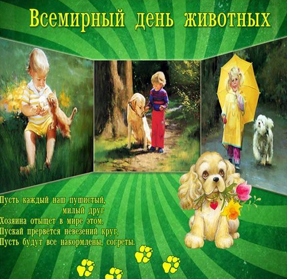 Картинка на 4 октября всемирный день защиты животных