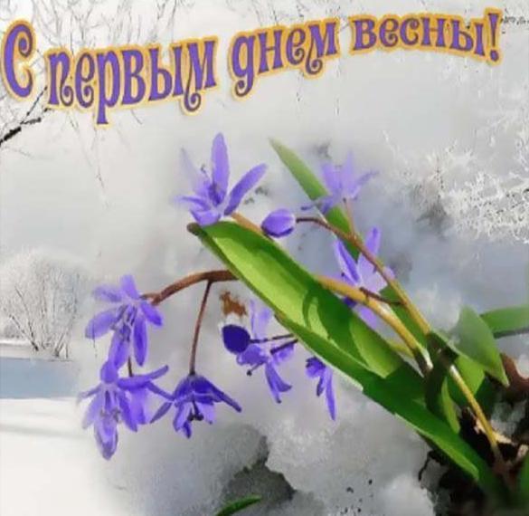 Бесплатная открытка с 1 марта