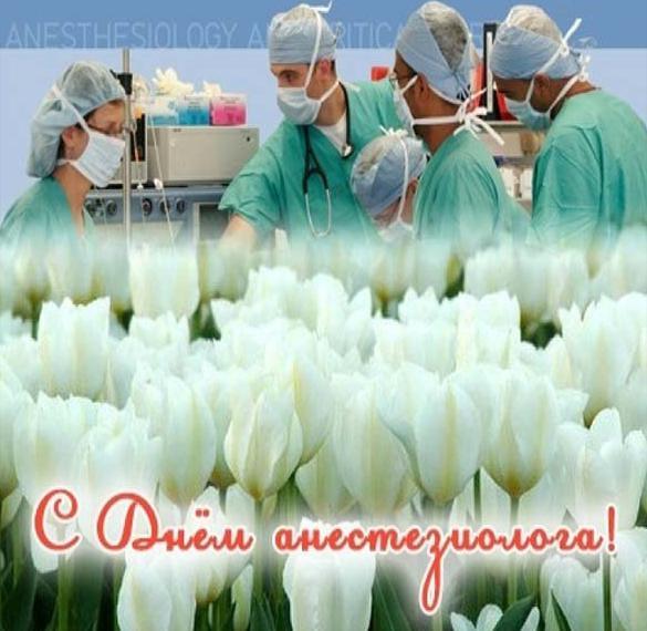 Бесплатная картинка на день анестезиолога