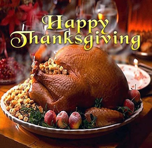Фото картинка на день благодарения