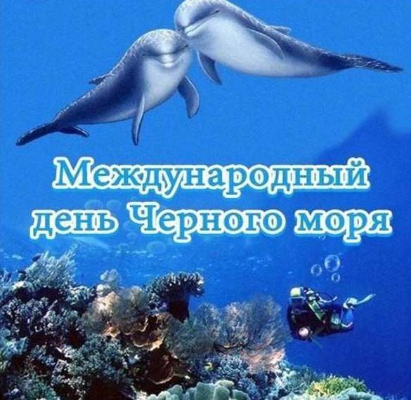 Красивая картинка на день Черного моря