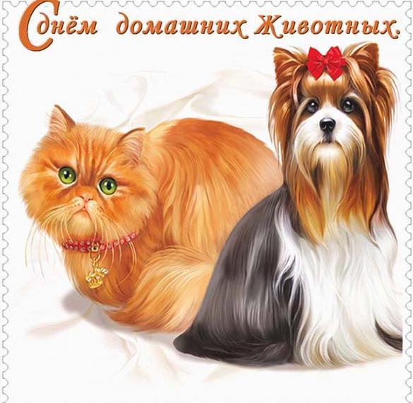 Открытка на день домашних животных