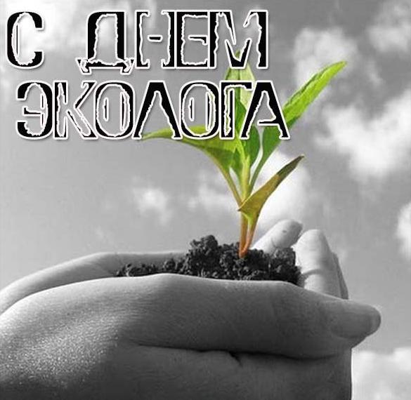 Прикольная картинка на праздник день эколога