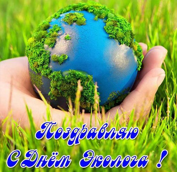 День эколога открытки с днем эколога