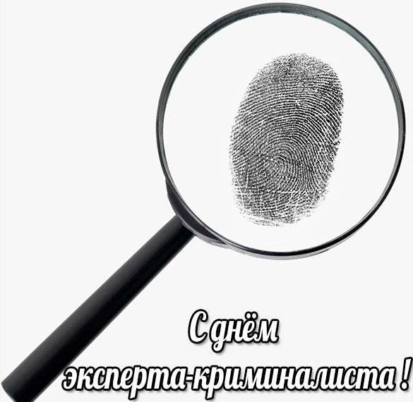 Картинка на день эксперта криминалиста