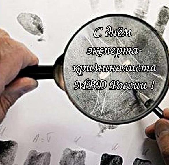Картинка на день эксперта криминалиста МВД России
