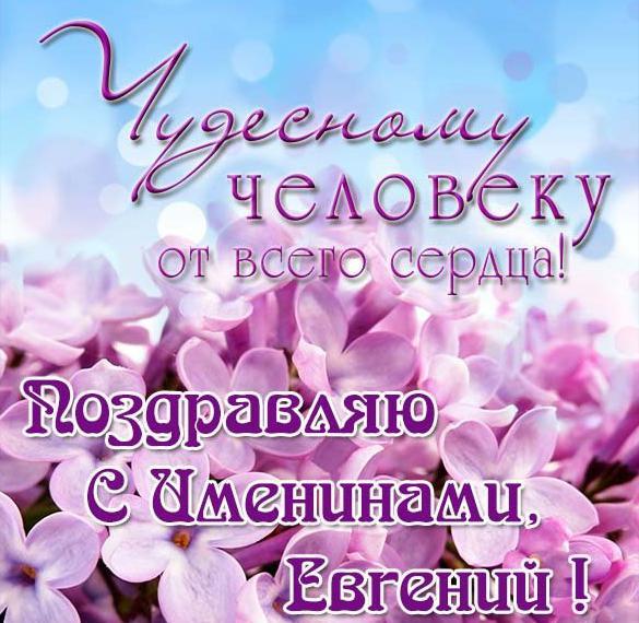 день имени евгения поздравления удивительно