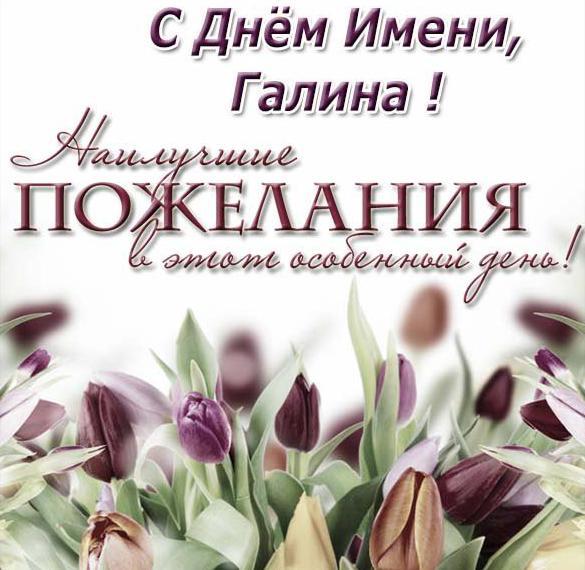 Открытка на день имени Галина