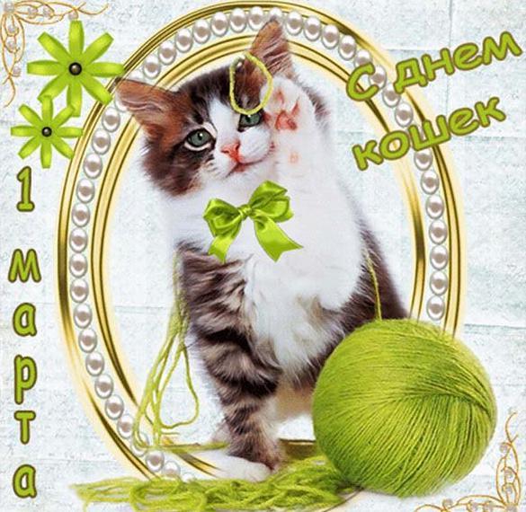 Картинка на день кошек 2018
