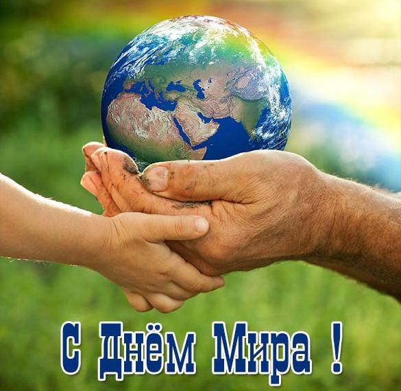 Фото картинка на день мира