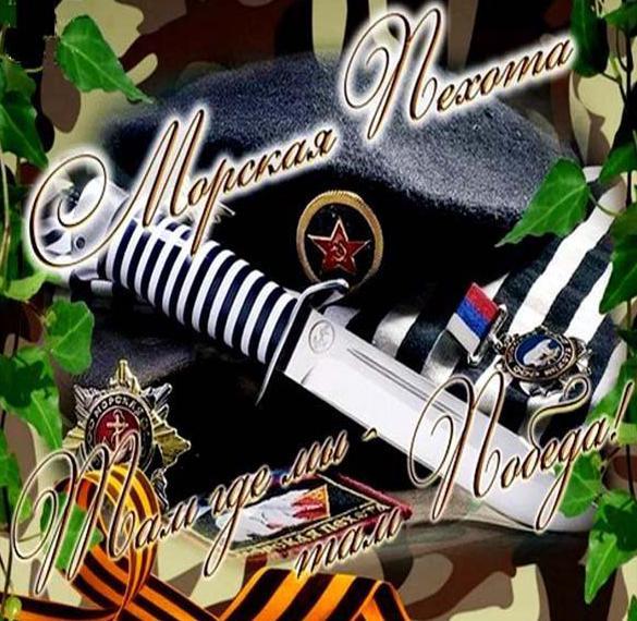 Картинка на день морской пехоты России