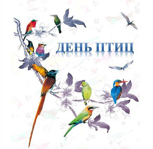 Картинка на день птиц 1 апреля