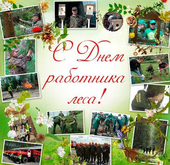 Красивая открытка на день работника леса