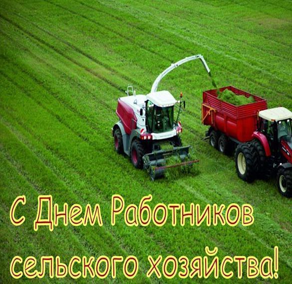 Картинка на день работника сельского хозяйства