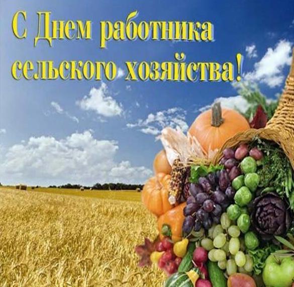 Красивая открытка на день работника сельского хозяйства