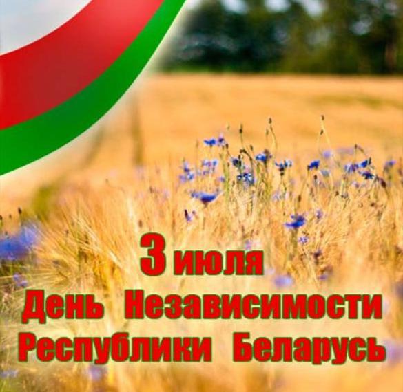 Картинка на день Республики Беларусь