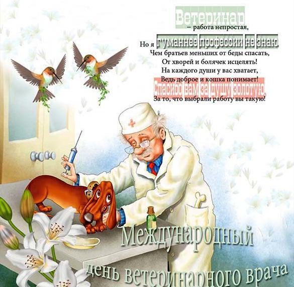 Картинка на день ветеринара с поздравлением