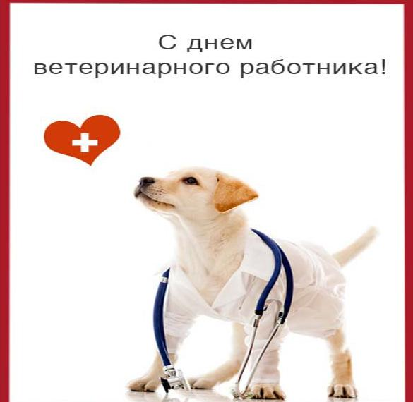 Открытка на день ветеринара