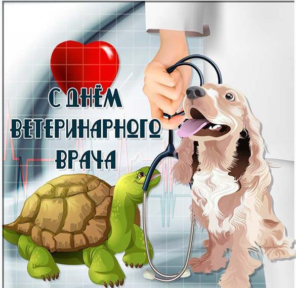 Открытка на день ветеринарного врача