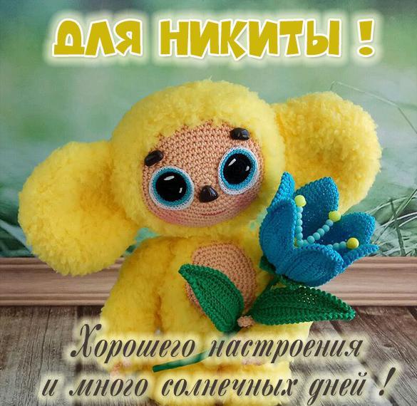 Детская картинка с именем Никита