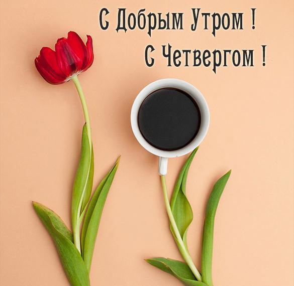 Красивая открытка доброе утро с четвергом