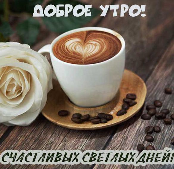Фото открытка доброе утро и хорошего дня
