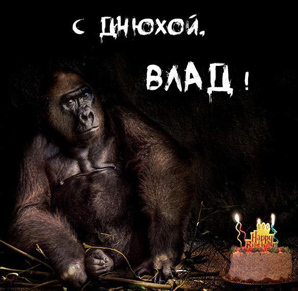 Прикольное фото с днем рождения Влад