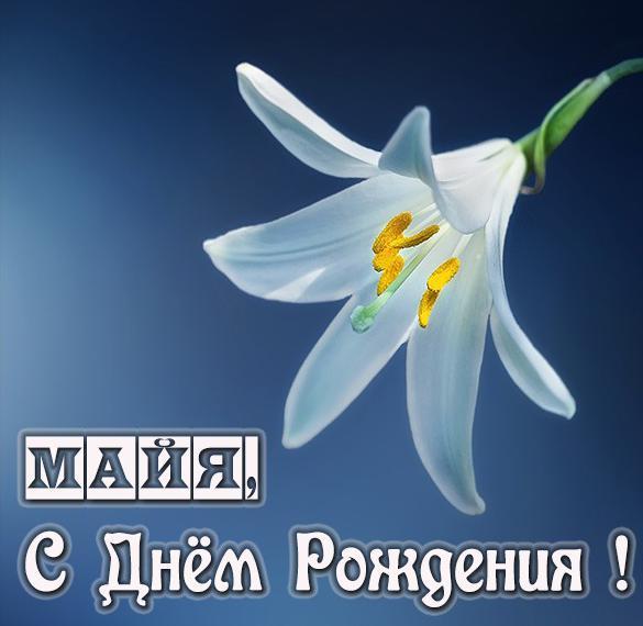 Именная открытка с днем рождения Майя