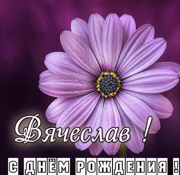 Именная открытка с днем рождения мужчине Вячеславу