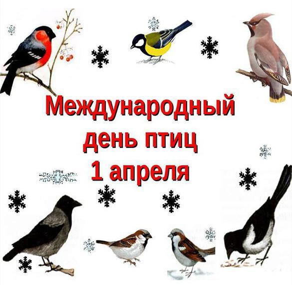 Картинка на 1 апреля международный день птиц