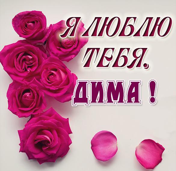 Картинка Дима я тебя очень люблю