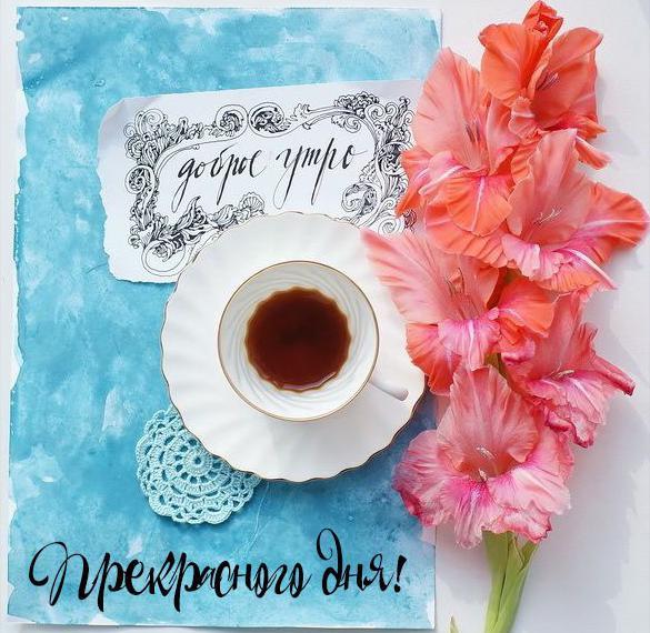 Картинка доброе утро и прекрасного дня красивая