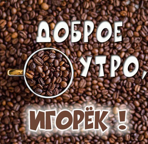 Картинка доброе утро Игорек