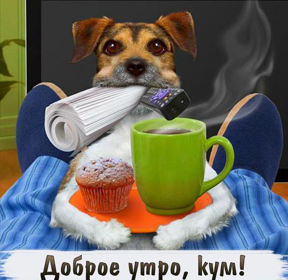Красивые фото доброго утра зимой запрещенных веществ