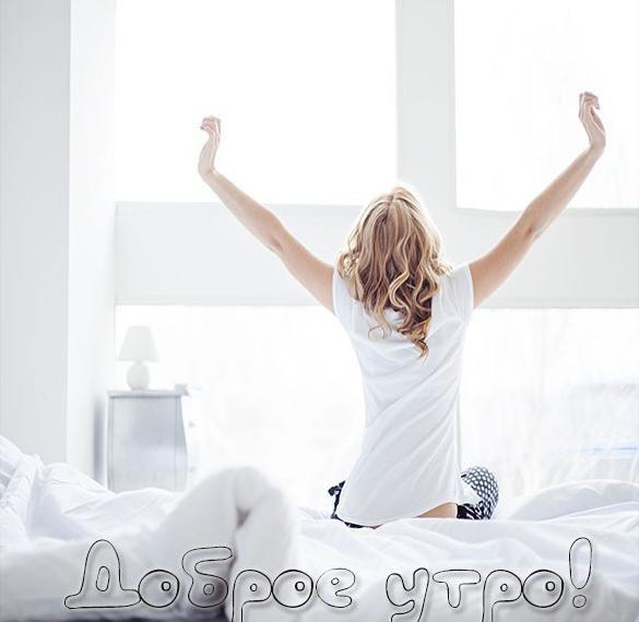 Картинка доброе утро красивая необычная для девушек