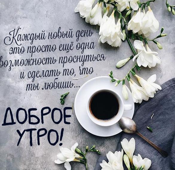 Картинка доброе утро красивая позитивное пожелание