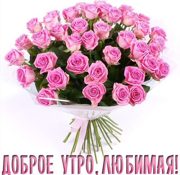 Картинка доброе утро любимая красивые цветы