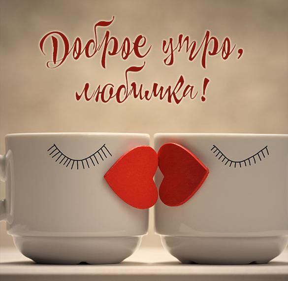 Картинка доброе утро прикольная любимка
