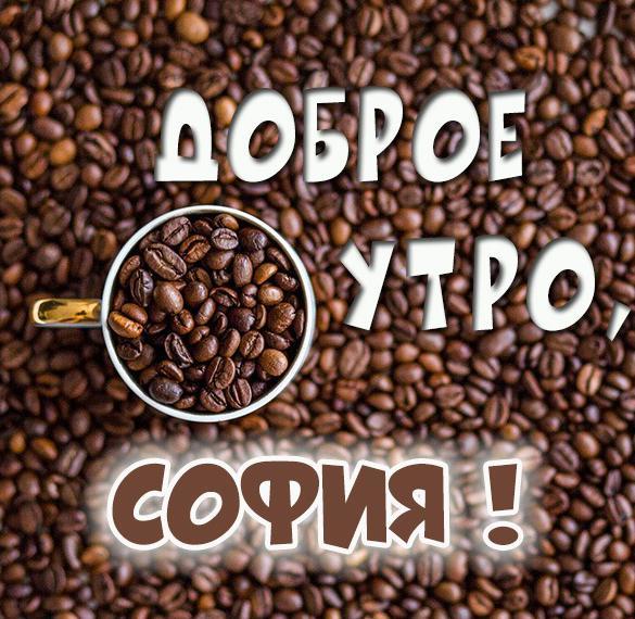 Картинка доброе утро София
