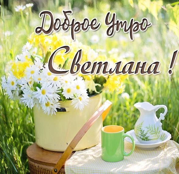 Картинка доброе утро Светлана с надписями