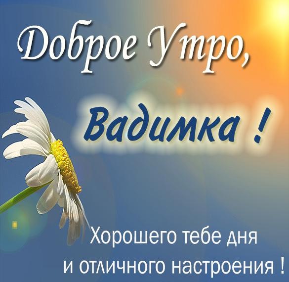 Картинка доброе утро Вадимка