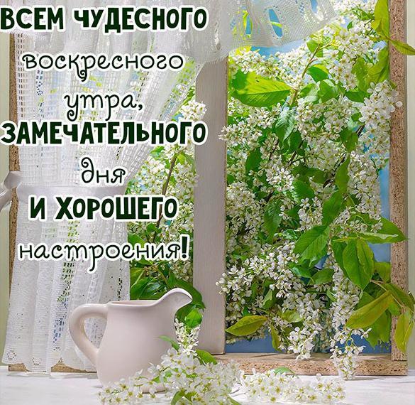 Красивая картинка доброго воскресного дня