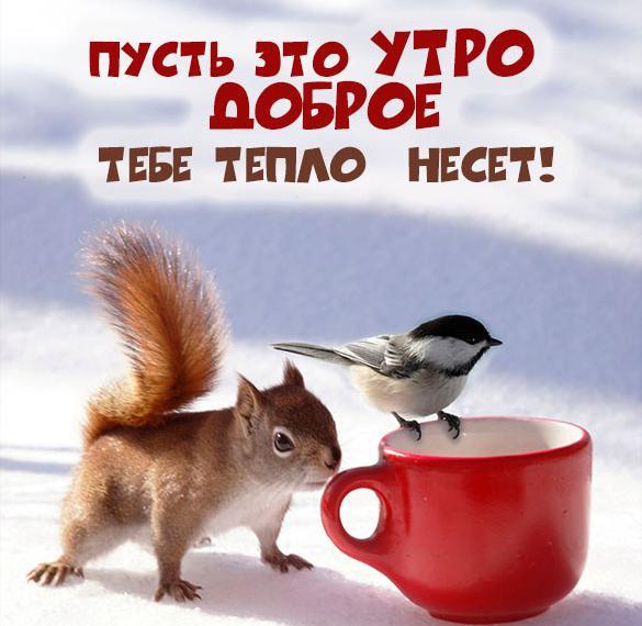 Картинка доброго зимнего утра милая