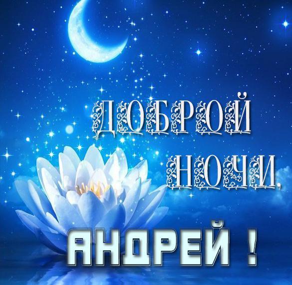 Картинка доброй ночи Андрей
