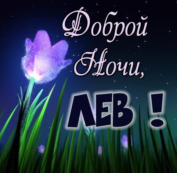 Картинка доброй ночи Лев