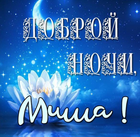 Картинка доброй ночи Миша