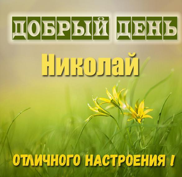 Картинка добрый день Николай