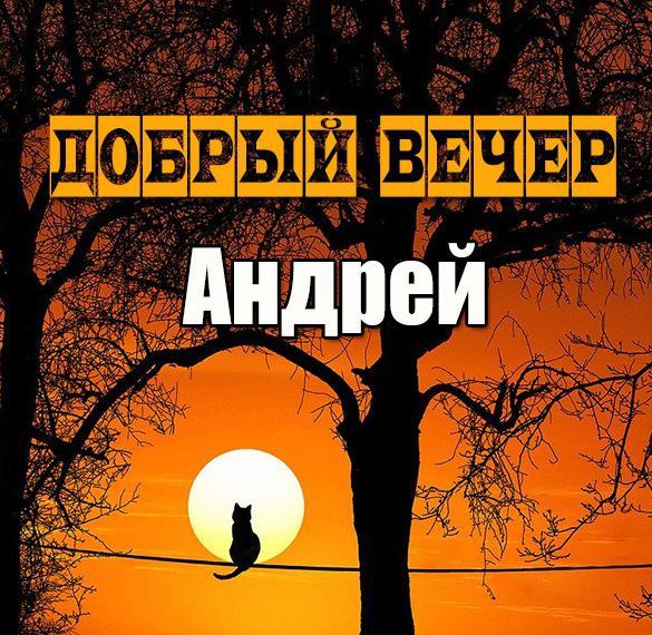 Картинка добрый вечер Андрей
